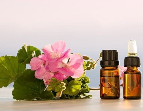 10 Geranium Oil Benefits for Healthy Skin and More