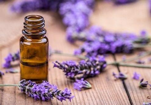 13 Surprising Benefits of Lavender Essential Oil